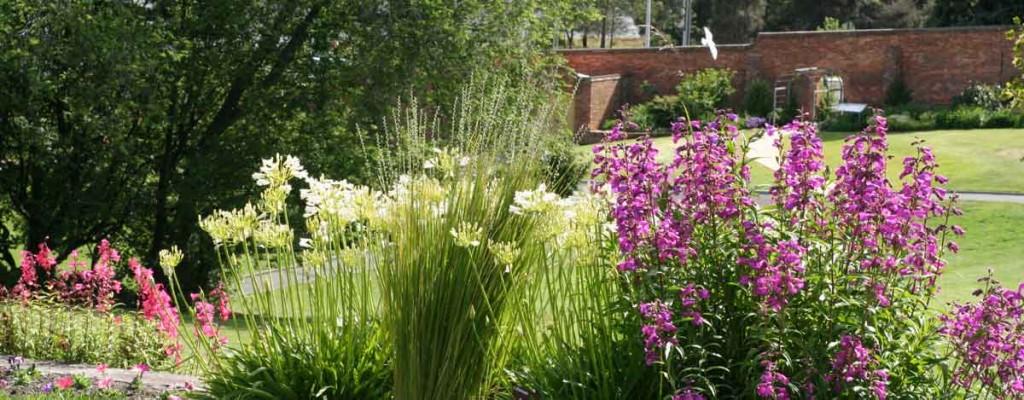 botanical gardens, hobart, tasmania