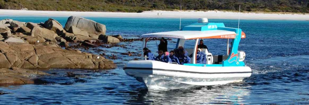 bay of fires, eco tours, cruise, binnalong bay, tasmania